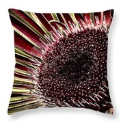 Daisy Unleashed Throw Pillow