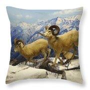 Dall Sheep Diorama Throw Pillow