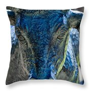 Dallas Pioneer Plaza Cattle Throw Pillow