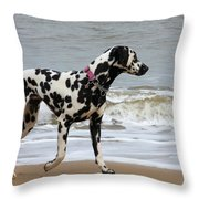Dalmatian By The Sea Throw Pillow