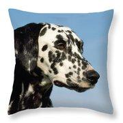 Dalmatian Dog Throw Pillow