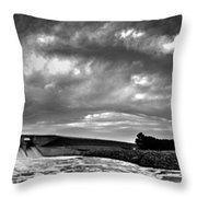 Dam Panoramic Throw Pillow