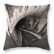 Dam Reticulation Throw Pillow