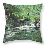 Dam Site Throw Pillow