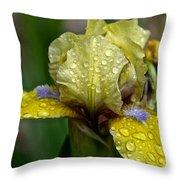 Damp Bluebeard Throw Pillow