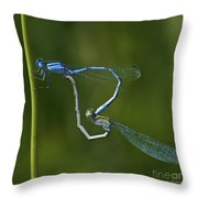 Damsel Love.. Throw Pillow