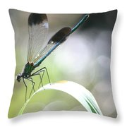 Damselfly On Little River  Throw Pillow