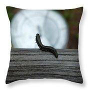 Dance Of The Caterpillar Throw Pillow