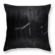 Dance Of The Corn Throw Pillow