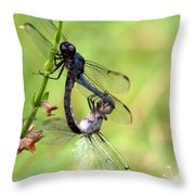 Dance Of The Dragonfliesd Throw Pillow