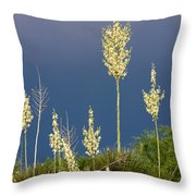 Dance Of The Yucca Throw Pillow