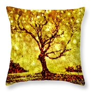 Dances With Stars 2 Throw Pillow