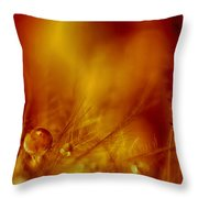 Dancing At The Gates Of Hell Throw Pillow