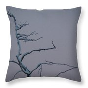 Dancing By The Light Of The Moon Can Throw Pillow