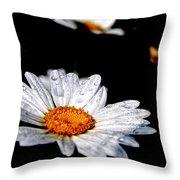 Dancing Daisy Throw Pillow