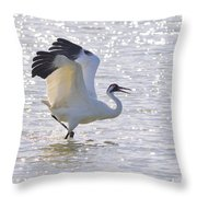 Dancing For My Lady Throw Pillow