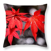 Dancing Japanese Maple Throw Pillow by Rona Black