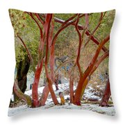Dancing Manzanitas On The Hillside In Park Sierra-california Throw Pillow