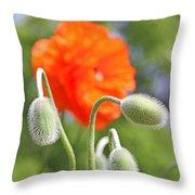 Dancing Orange Poppy Flower Pods Throw Pillow