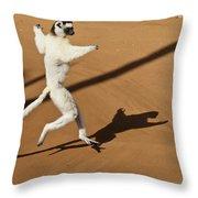 Dancing Sifaka 1 Throw Pillow