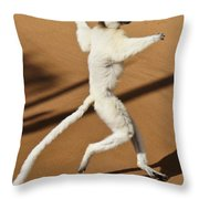 Dancing Sifaka 2 Throw Pillow