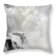 Dancing Waters Throw Pillow