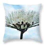 Dandelion After Rain Throw Pillow