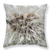 Dandelion Ant Trap Throw Pillow