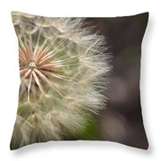 Dandelion Art - So It Begins - By Sharon Cummings Throw Pillow