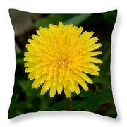 Dandelion Beauty Throw Pillow