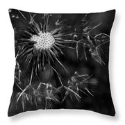 Dandelion Burst Throw Pillow