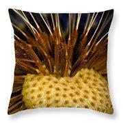 Dandelion Burst Throw Pillow
