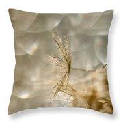 Dandelion Heaven Throw Pillow