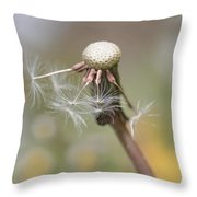 Dandelion Last To Fly Away Throw Pillow