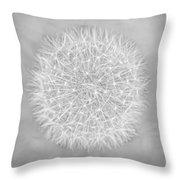 Dandelion Marco Abstract Gray Throw Pillow