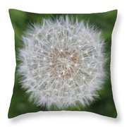 Dandelion Marco Abstract Throw Pillow