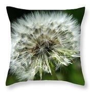 Dandelion Ready Throw Pillow