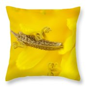 Dandelion Seed And Flower Throw Pillow