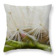 Dandelion Seed Head Macro IIi Throw Pillow