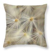 Dandelion Seed Head Macro Iv Throw Pillow