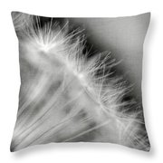 Dandelion Seeds - Black And White Throw Pillow