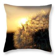 Dandelion Sunset Throw Pillow