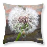 Dandelion Tada Throw Pillow