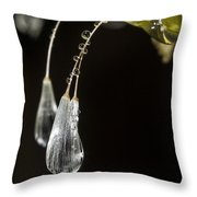 Dandelion Tears Throw Pillow