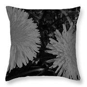 Dandelion Weeds? B/w Throw Pillow