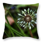 Dandelion Will Make You Wise Throw Pillow