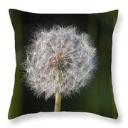 Dandelion With Abstract Grasses Throw Pillow
