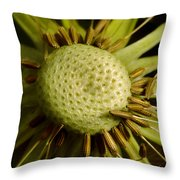 Dandelion With Seeds Throw Pillow