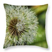 Dandelion With Water Drops Throw Pillow