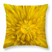 Dandelion With Waterdrop Throw Pillow